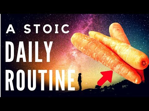 12 Steps To Become A Perfect Stoic (How To Be A Stoic/Practical Stoicism)