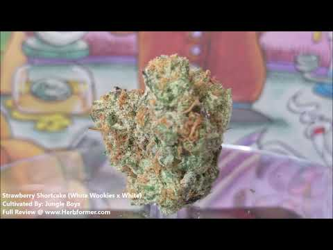 Jungle Boys] Strawberry Shortcake - Herb•form•er
