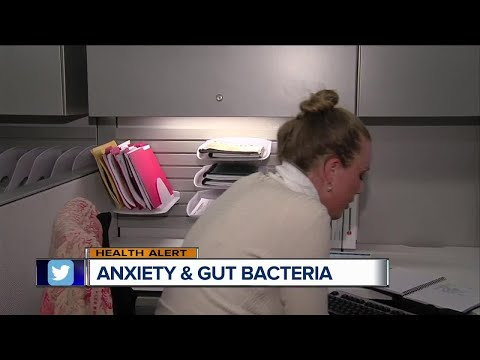 Anxiety and gut bacteria