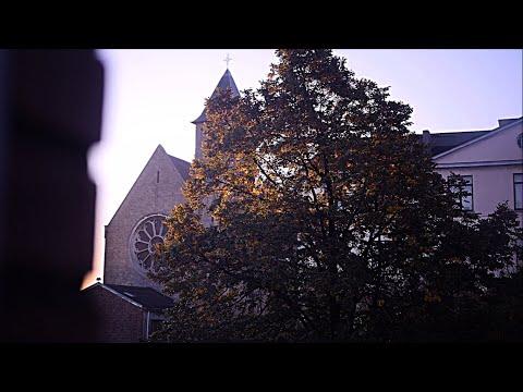 L'institut Saint-Boniface-Parnasse