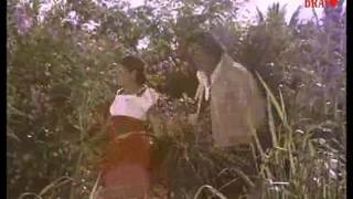 Mele Poomala Malayalam Song