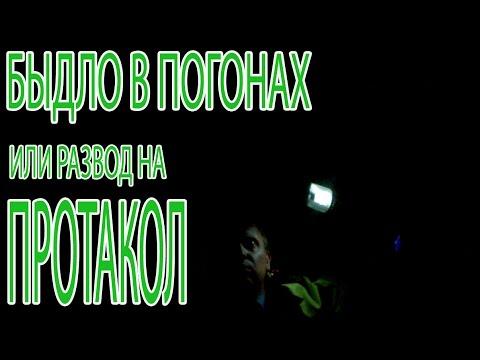 Чернигов - Объявления - Раздел: Интим услуги , секс услуги
