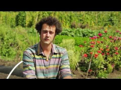 Leon Biundo - Soil, Food and Health Internship at Koanga Institute (Kotare Village)