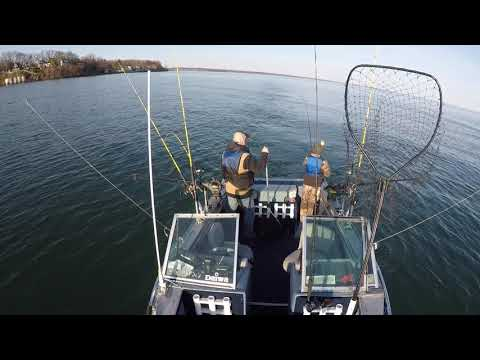 Lake Ontario Fishing Brown Trout 4-7-20
