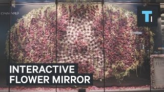 Interactive mirror made of 3,000 flowers responds to your movement