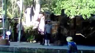 Pertunjukan Satwa Terampil Gembira Loka Zoo  1