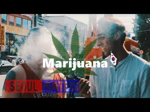 Marijuana in Korea