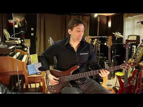 Bass Collection Basses: Speakeasy Basses