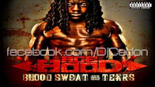 Ace Hood feat. Kevin Cossom - Memory Lane [Blood Sweat & Tears] 2011
