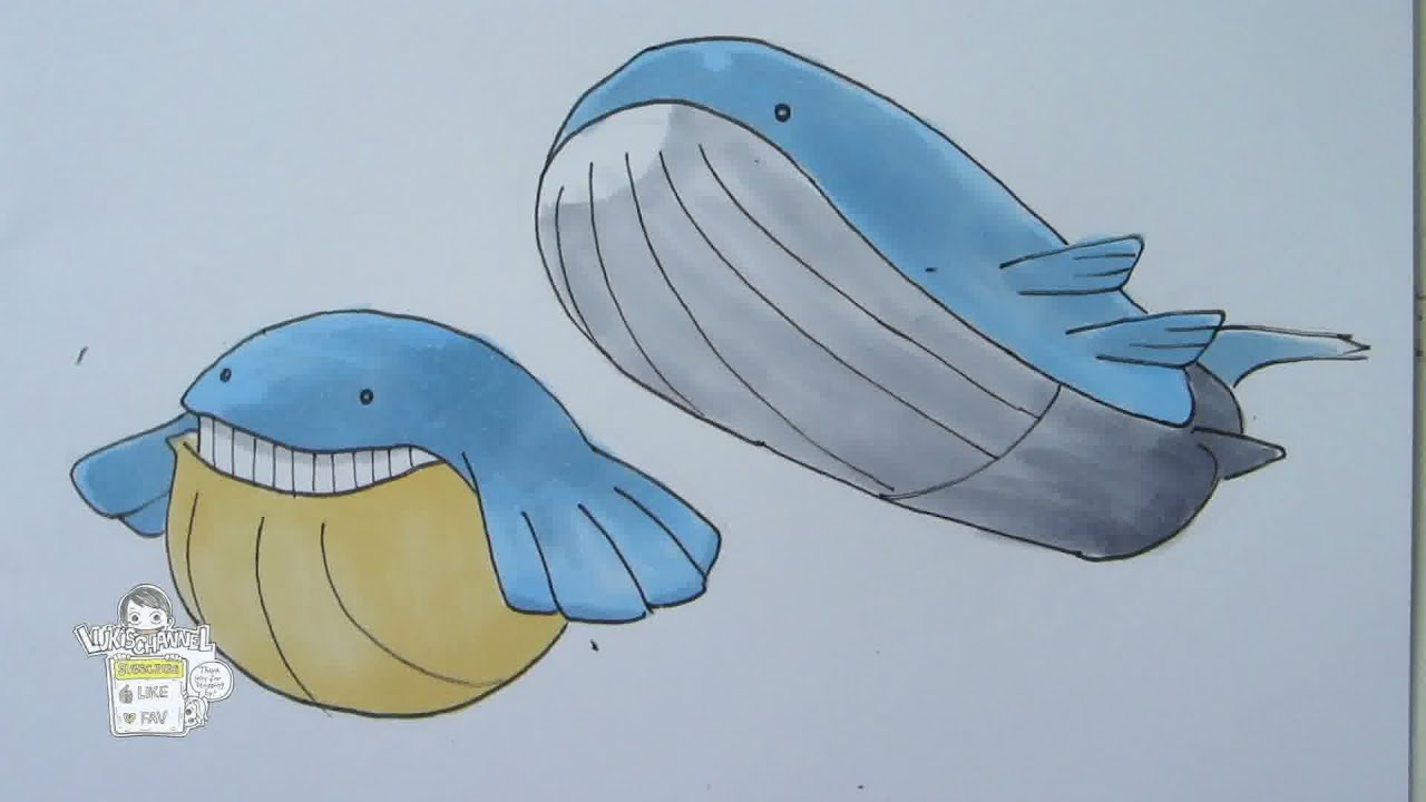 How to draw Pokemon: No. 320 Wailmer, No. 321 Wailord ... Wailmer Pokemon