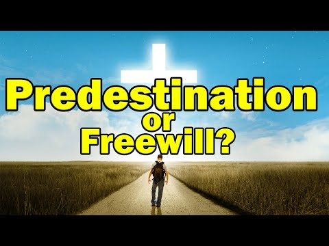freewill and predestination Predestination definition is - the act of predestinating : the state of being predestinated the act of predestinating : the state of being predestinated see the full definition since 1828 menu join mwu gain access to thousands of additional definitions games.