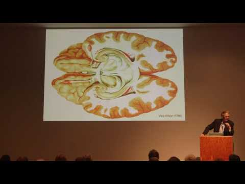 The Life and Scientific Times of Cajal: A Talk with Larry W. Swanson PhD