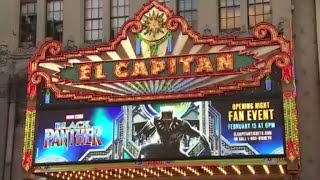 """""""Black Panther"""" shatters records during opening weekend"""