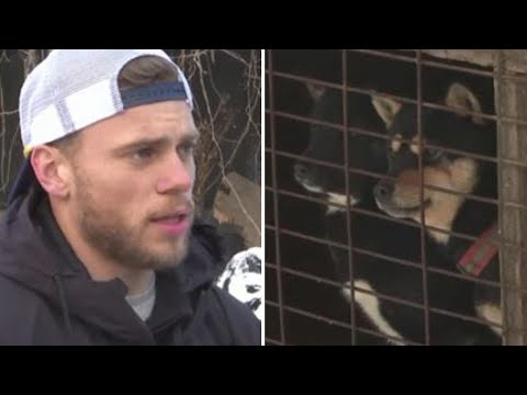 Olympian Gus Kenworthy Visits Korean Dog Meat Farm: 'I Am Heartbroken'