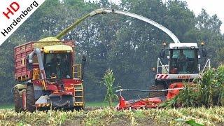 Harvesting mais   Claas Jaguar 900 op rupsen   Vredo VT3936   Nikkels   Ecofactorij   NL.