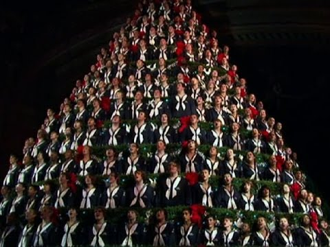 Extreme Christmas Trees: Singing Tree - YouTube
