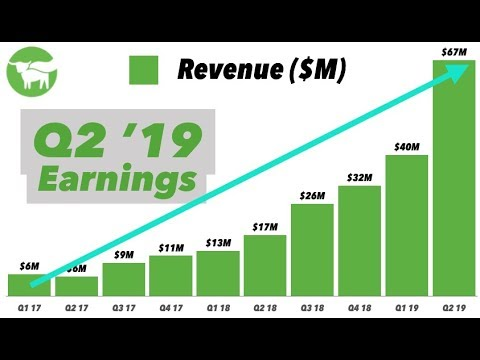 beyond-meat-q2-2019-earnings-&-cc-analysis-📊📞