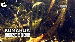 Енотаевский район : Рыбалка в Астраханской области ...
