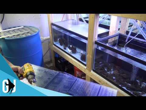 389 How To Twin Wall Polycarbonate Aquarium Lid Diy