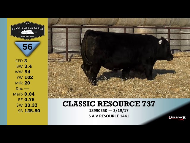Classic Angus Ranch Lot 56