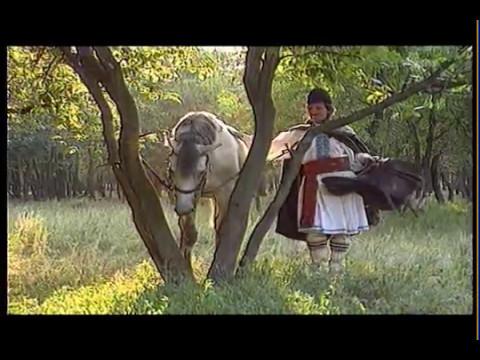 Liviu Vasilică — Fir-ai tu să fii de murg © (Subtitle available: English, Spanish, ♫ ♪ ♪ ♫