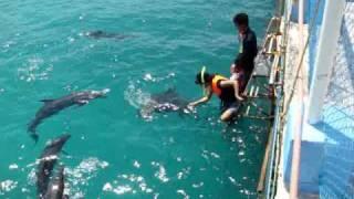 Misamis Occidental Aquamarine Park (Philippines)