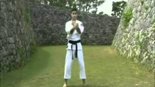 Okinawan Martial Arts - The Great Masters 1