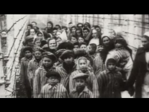 Holocaust Survivor Recalls Life After Auschwitz Liberation Youtube