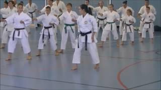 Rika Usami - Pinan Nidan