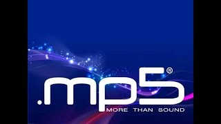 Mp5 - new file format