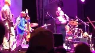 Tupelo Honey (Cassandra Wilson live)