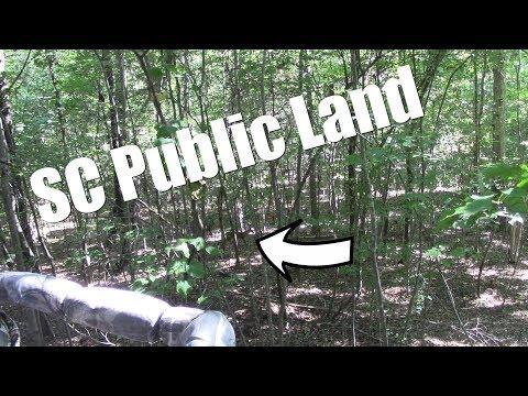 SC Public Land Hunting 2019