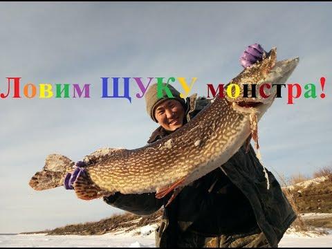 Fishing ловим ЩУКУ