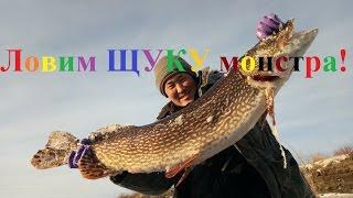 Catching a monster pike! Yakutia Russia Fishing eng subs