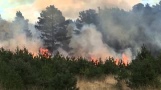 Camberley Heath Fire