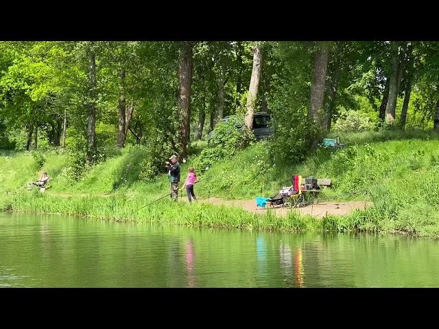 Ihmsen - Der Forellengott Forellensee Rosenweiher Forelle geht weiterhin