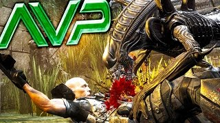 XENOMORPH IMPREGNATING AND STALKING HUMANS, BEST GAME EVER - (Alien vs Predator Gameplay)