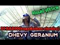 Di Radio Kugadaikan Cintaku Dhevy Geranium Reggae Version  Mp3juices  Mp3 - Mp4 Download