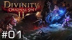 DIVINITY: ORIGINAL SIN 2 | #01 | Ein wahrer Rollenspiel Traum [PC/GAMEPLAY/DEUTSCH]