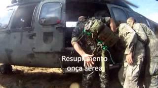 Guerra na selva 2013