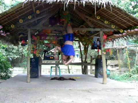 The Animal Show - Lady Gaga of Alburquerque, Bohol