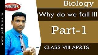 Part-1 : Why do we fall ill | Biology | Class 8 | AP&TS Syllabus