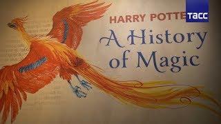 Что покажут на выставке, посвященной миру Гарри Поттера