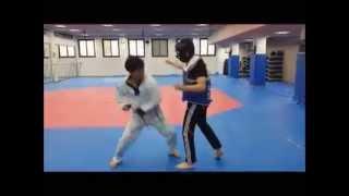 Taekwondo Punch, Kick, Knee & Elbow Applications (Part 1)