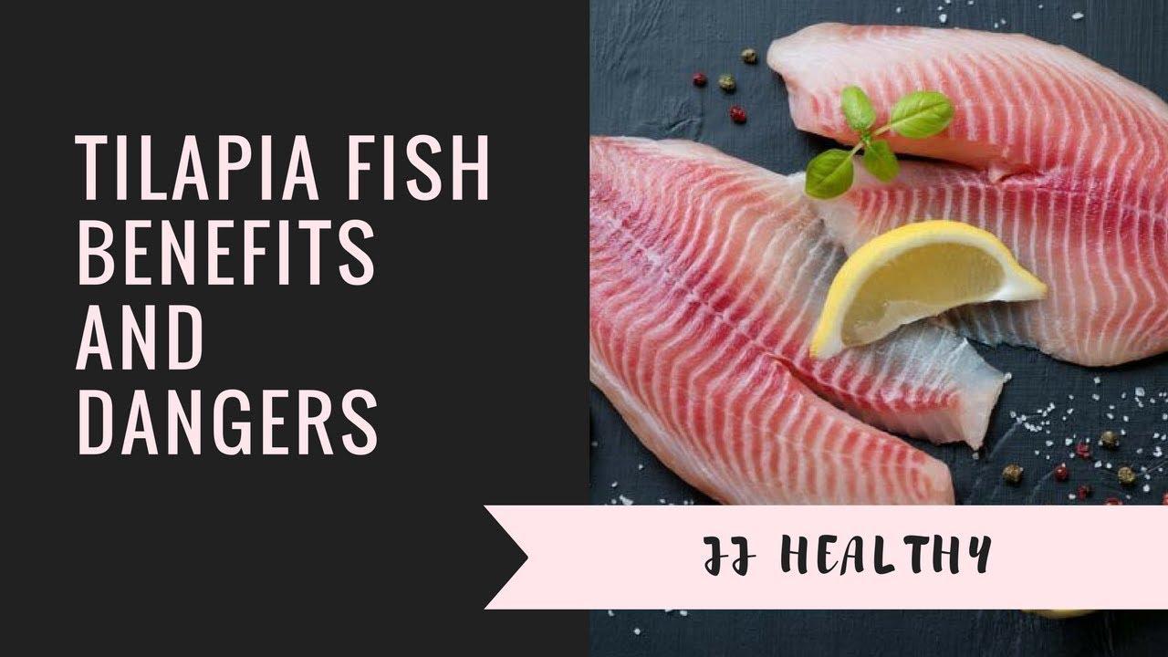 Tilapia Fish Benefits and Dangers - YouTube