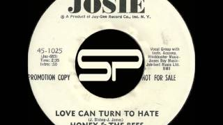 SISTER FUNK 45t - HONEY & THE BEES - Love Can Turn To Hate - 1971 Josie
