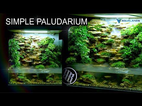 mini-complete-paludarium-with-waterfalls