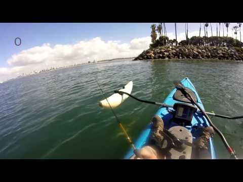 Long Beach Harbor Fishing