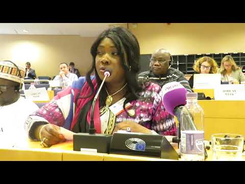 PAP MPs speak to Security issues during the Africa Week at the European Parliament