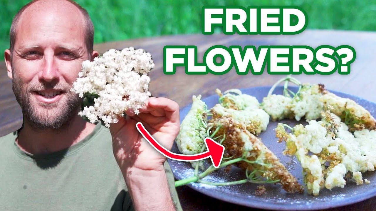 I Made A 3-Course Meal Out Of Weeds And Flowers For $0